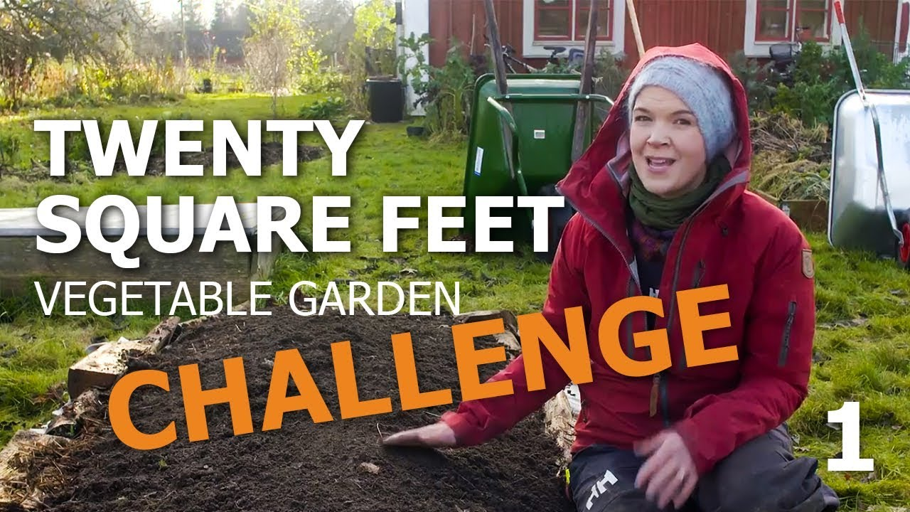 20 Square Feet Vegetable Garden Challenge – in a raised bed: Mulching techniques (part 1)