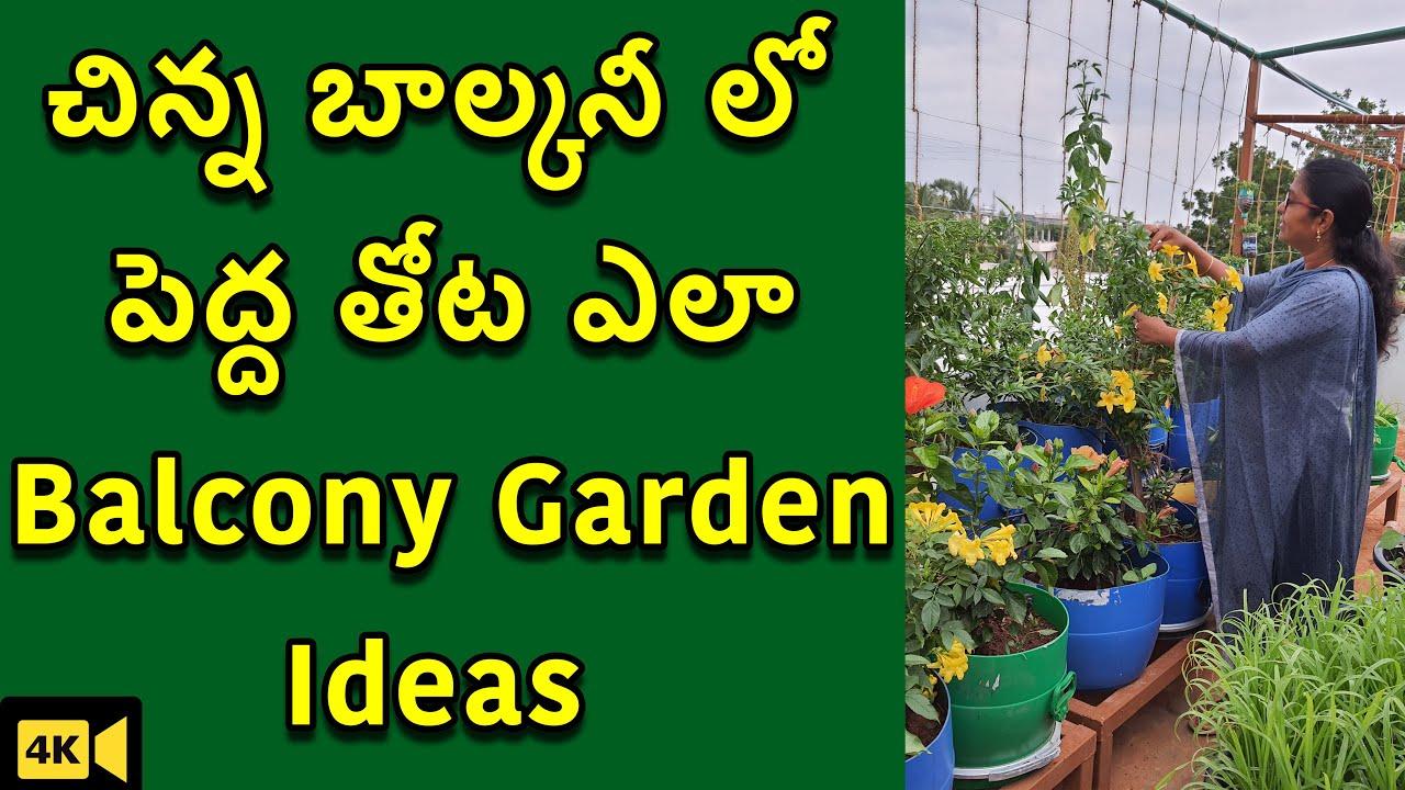 చిన్న బాల్కనీలో ఎక్కువ మొక్కలు పెంచుకోవడం ఎలా   Balcony Gardening Ideas 