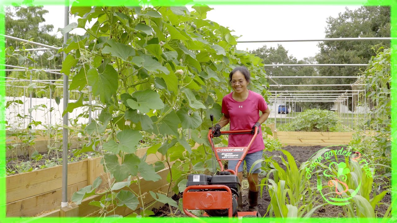 The secret to a successful vegetable garden, hubby asked and disclose…
